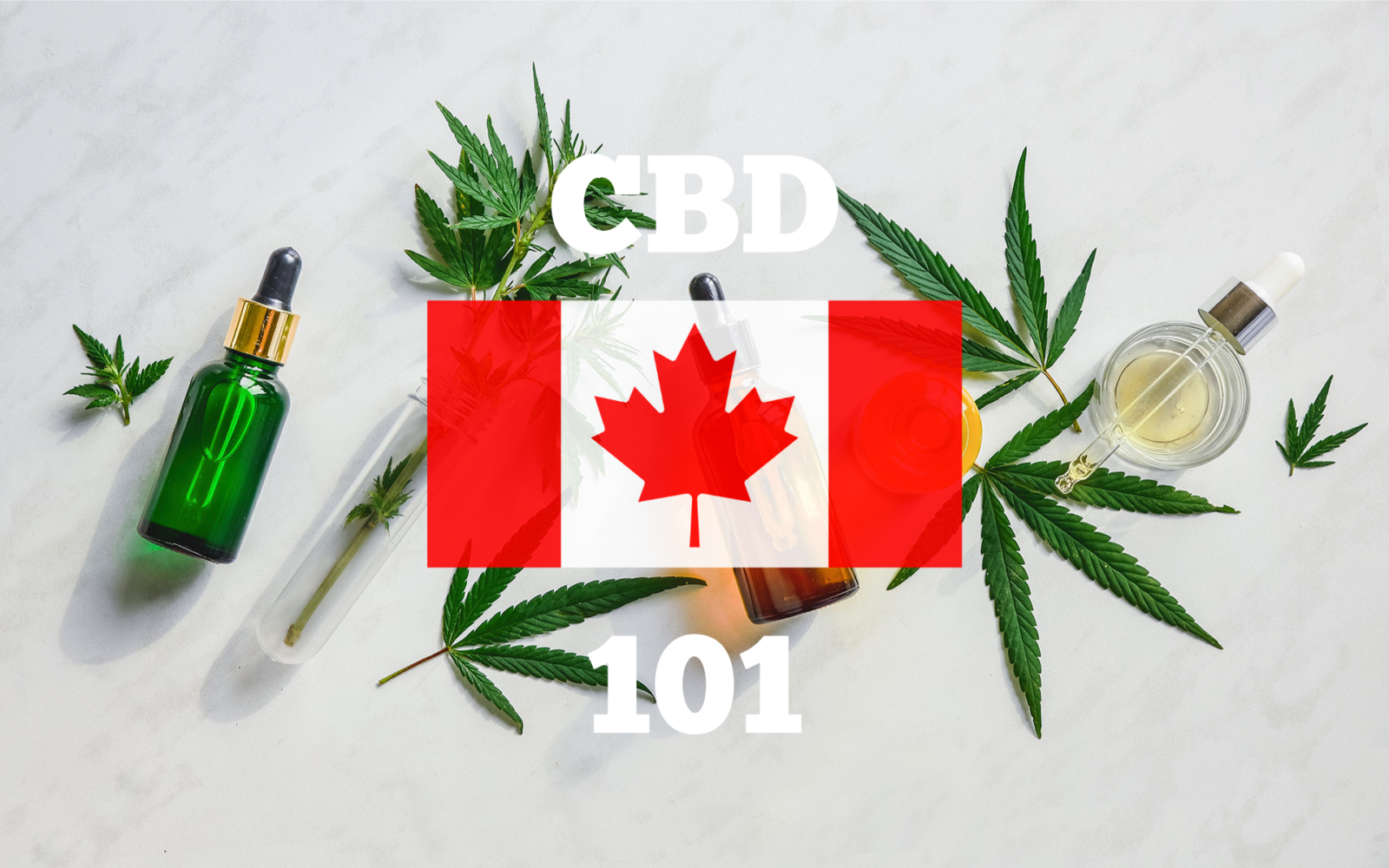 visualizes the subject of contents for those interested in cbd oil in canada