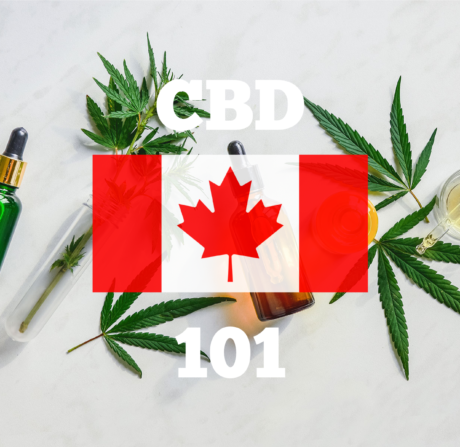 Oh Canada! CBD Oil 101 – An Introduction to Cannabidiol