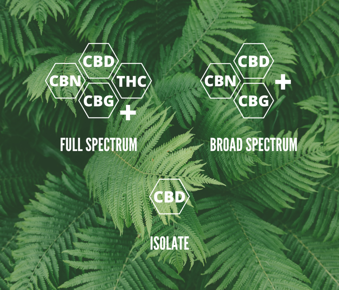 CBD Isolate vs Full spectrum - a ...hempika.com