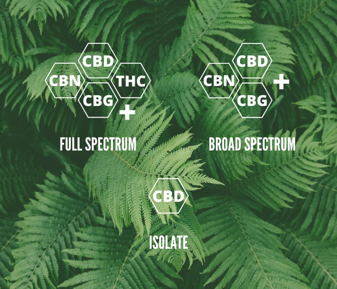 Full Spectrum CBD vs Broad Spectrum CBD