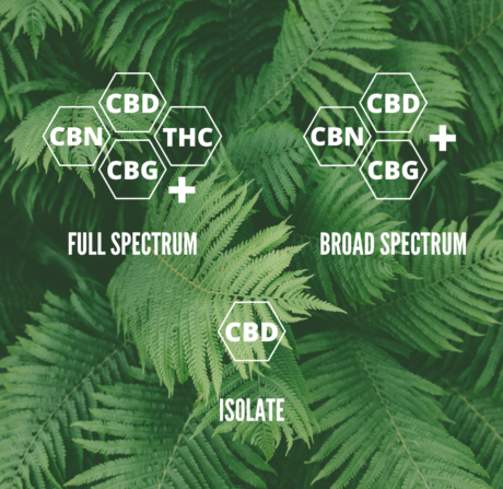 Full Spectrum CBD vs Broad Spectrum vs CBD Isolate, What's the Difference?