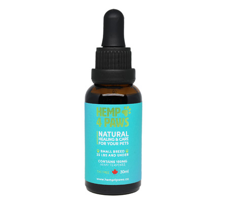 CBD Tincture for Pets