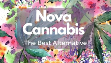Educational: alert viewer to alternative to Nova Cannabis
