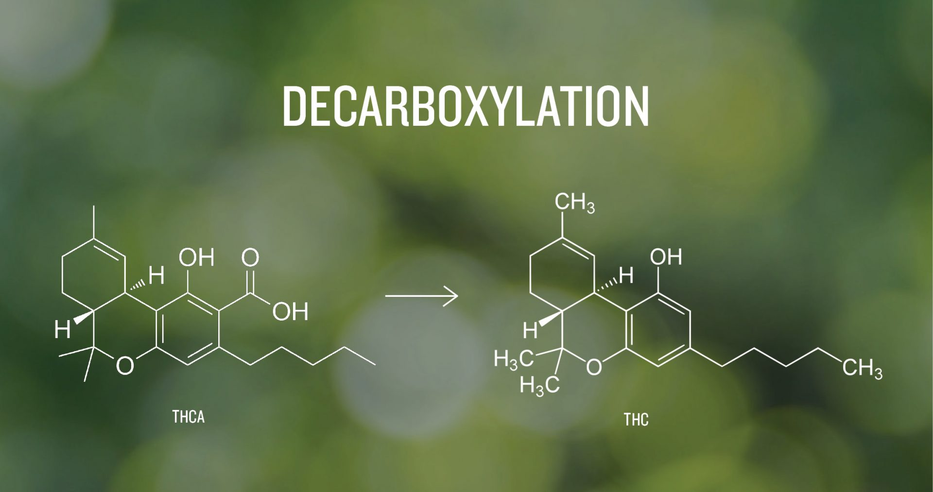 educational molecular diagram decarboxylation for how to make cbd oil