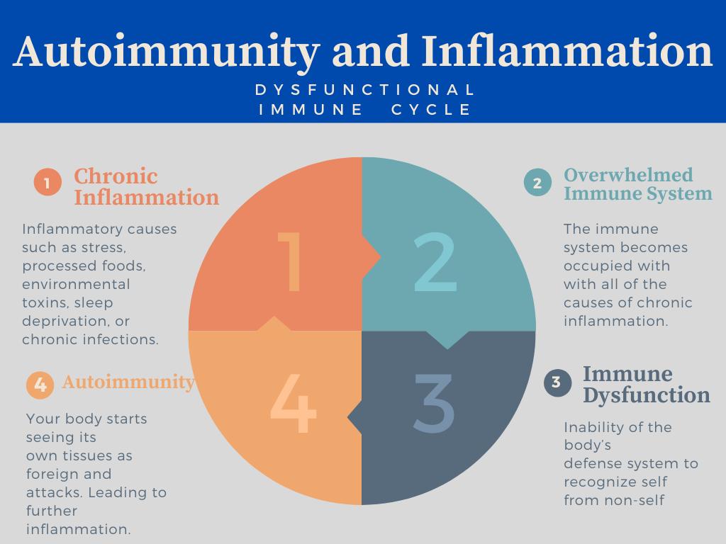 cbd as preventative medicine article chart depicting inflammation's influence on autoimmune disease