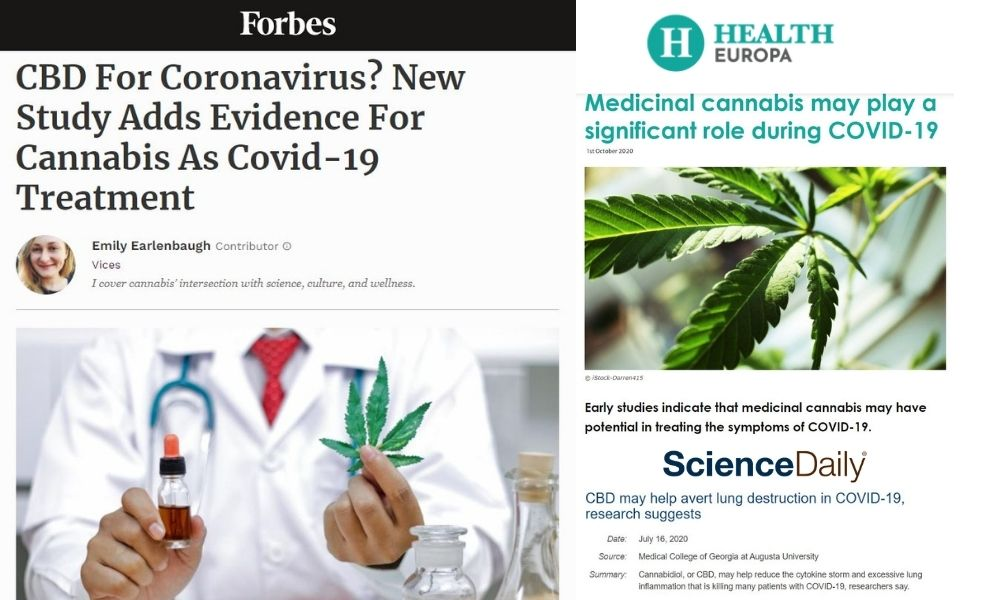 visualizes media reaction to CBD for COVID-19 story