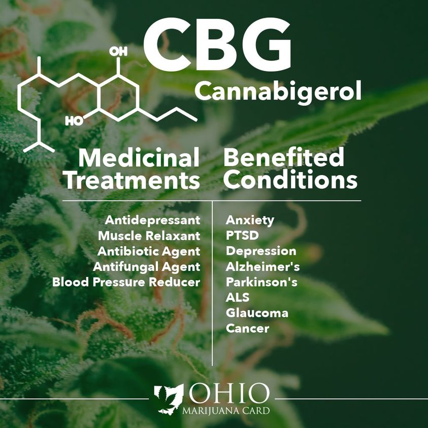 infographic relating benefits of cannabigerol